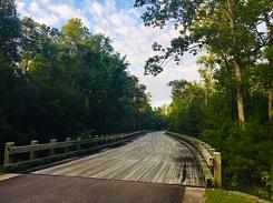 River Sea Plantation Bridge 3