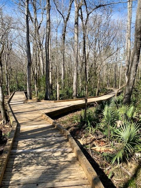 Palmetto Creek Nature Trail
