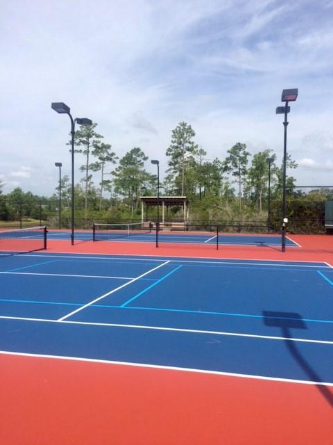 Palmetto Creek Tennis Court